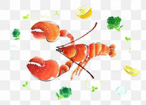 Lobster Watercolor Painting - Watercolor Painting Illustration PNG