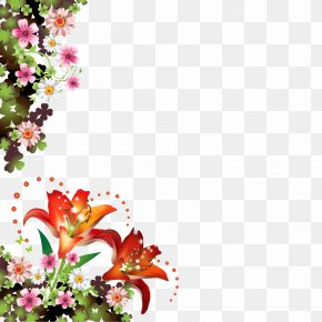 Butterfly Borders - Picture Frames Flower Borders And Frames Floral Design Clip Art PNG