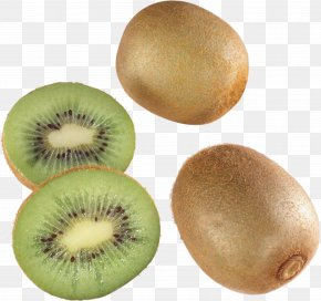 Kiwis Image Picture - Kiwifruit Hardy Kiwi Actinidia Deliciosa PNG