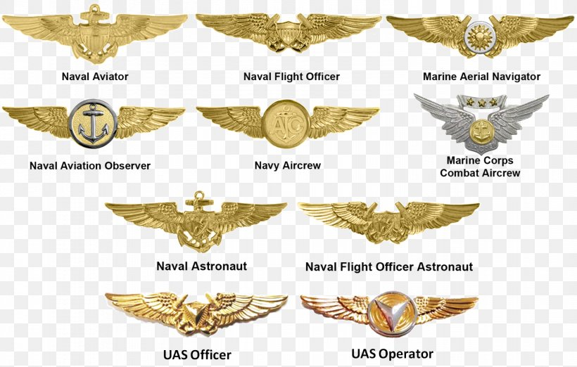 Badges Of The United States Marine Corps Unmanned Aerial Vehicle United States Of America United States Marine Corps Rank Insignia, PNG, 1502x957px, United States Marine Corps, Aircraft Pilot, Aircrew Badge, Devil Dog, Gold Download Free
