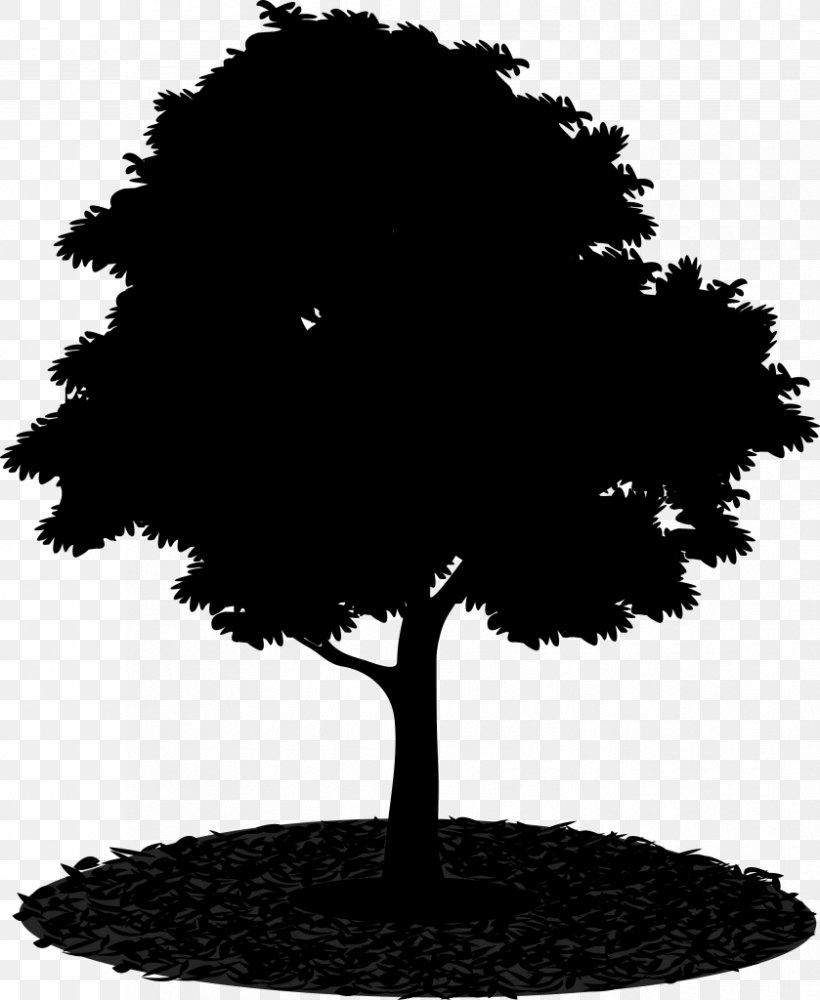 Tree Image, PNG, 839x1024px, Tree, Black, Blackandwhite, Cc0lisenssi, Fukei Download Free