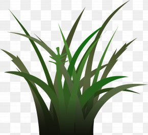 Green Grass - Free Content Stock Photography Clip Art PNG