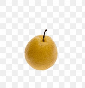 Pear - Asian Pear Still Life Photography Apple PNG