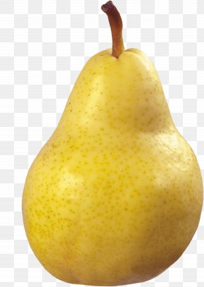 Yellow Pear Image - Asian Pear Fruit PNG