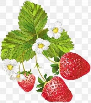 Blooming Strawberries Clip Art Image - Strawberry Frutti Di Bosco Clip Art PNG