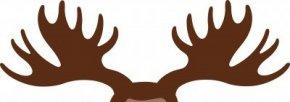 Antler Cliparts - Moose Deer Antler Elk Clip Art PNG