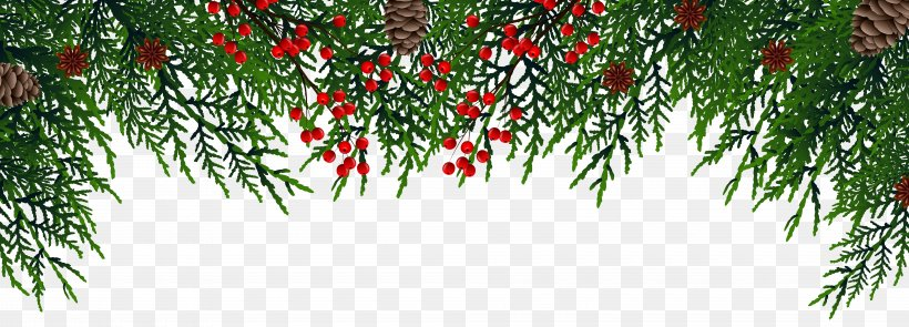 Christmas Decoration Christmas Ornament Christmas Tree, PNG, 8000x2887px, Christmas, Blog, Blue, Branch, Christmas Decoration Download Free