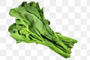 Free Kale Pull Material - Pizza Chinese Broccoli Vegetarian Cuisine Chard PNG