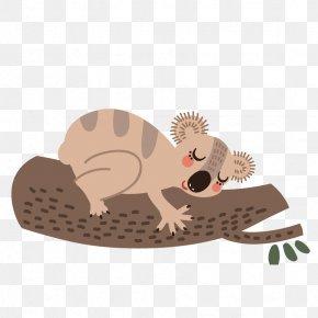 Cute Squirrel - Koala Wombat Bear Cartoon Sloth PNG