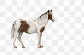 White Spotted Horse - Standing Horse Pixel PNG