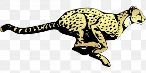 Running Leopard - Cheetah Leopard Jaguar Clip Art PNG