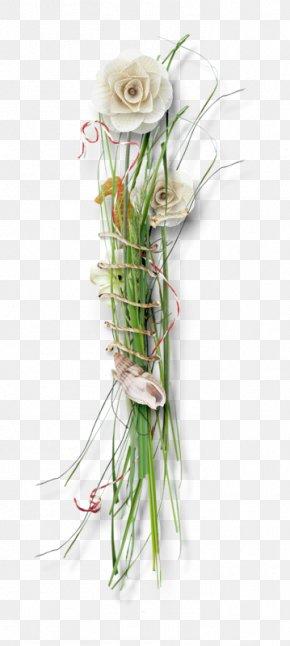 Floral Design Graphics Software Computer Graphics Clip Art PNG