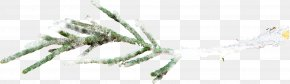 Flat Snow-covered Branch - Tree Branch Snow PNG
