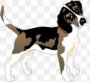 Loyal Puppy - Beagle Basset Hound Siberian Husky Puppy PNG