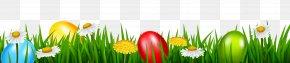 Easter Grass Transparent Clip Art Image - Easter Bunny Easter Egg Clip Art PNG