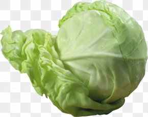 Cabbage Image - Red Cabbage Cauliflower Vegetable PNG