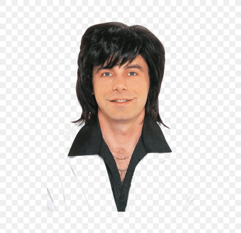 1970s 1980s Wig Male Costume, PNG, 500x793px, Wig, Afro, Bangs, Black, Black Hair Download Free