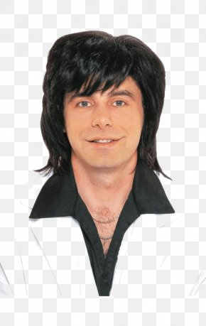 Hair Style - 1970s 1980s Wig Male Costume PNG