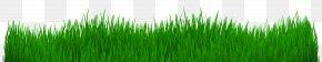 Grass - Desktop Wallpaper Wheatgrass Clip Art PNG