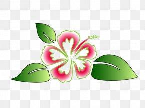 Hawaiian Flower Vector - Hawaii Hou02bboponopono Luau Clip Art PNG