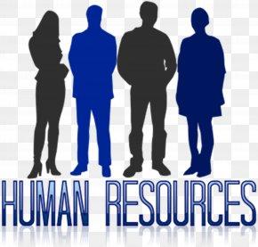Human Resource - Human Resource Management Human Resources Business Performance Management PNG