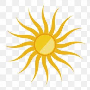Cartoon Sun - Glass Cattiva Boutique PNG
