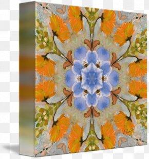 Design - Floral Design Petal Flowering Plant Pattern PNG