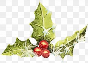 Tree Plane - Holly PNG