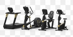 Gold's Gym Fitness Institute - Elliptical Trainers Fitness Centre Exercise Equipment Exercise Bikes Exercise Machine PNG