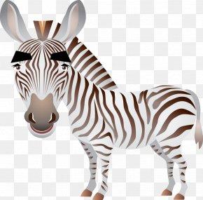 Zebra - Lion Horse Zebra Clip Art PNG