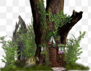 Fairy Tale - Tree House Desktop Wallpaper PNG