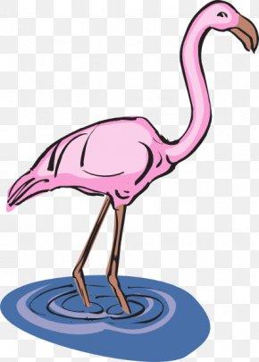 Bird Water Cliparts - Flamingo Water Bird Clip Art PNG