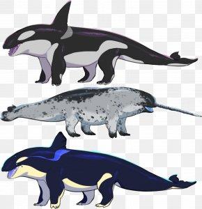 Dolphin - Killer Whale Porpoise Cetacea Dolphin Animal PNG