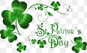 Clover - Saint Patricks Day March 17 Irish People Party Irish Diaspora PNG