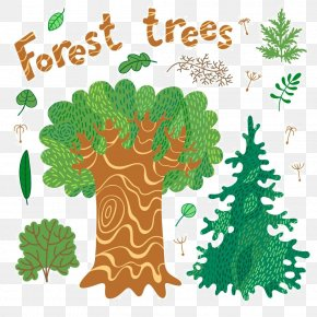 Cartoon Tree Material - Tree Forest Drawing Illustration PNG