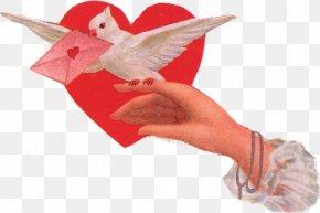 Valentine's Day - Valentine's Day Love Heart Clip Art PNG