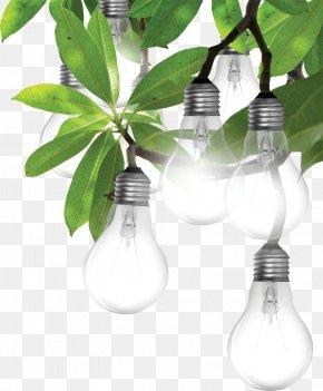 Lamps - Incandescent Light Bulb Lighting LED Lamp Light-emitting Diode PNG