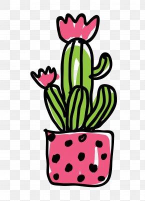 Vector Plant Cactus Picture - Cactaceae Euclidean Vector PNG