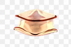 Artemisia Argyi - Particulate Respirator Type N95 Blindfold Dust Mask PNG