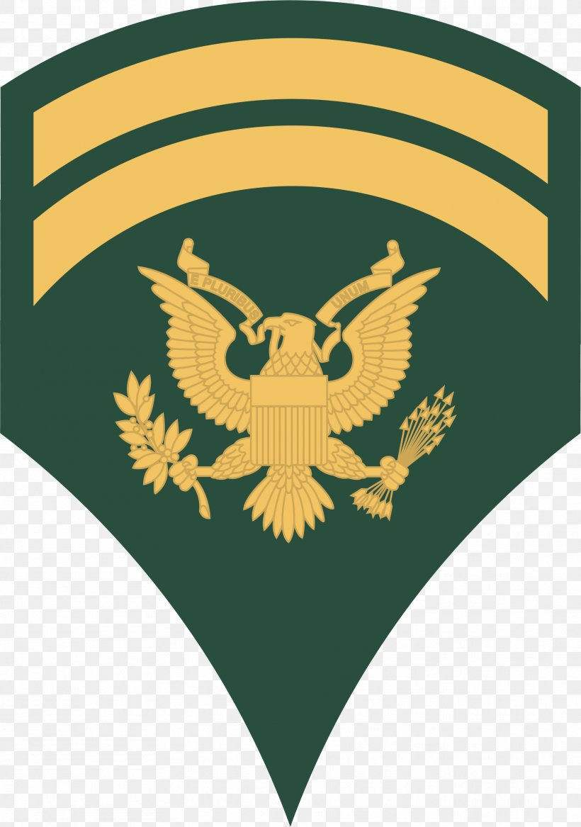 Specialist United States Army Military Rank Non-commissioned Officer, PNG, 1871x2665px, Specialist, Army, Army Officer, Corporal, Enlisted Rank Download Free