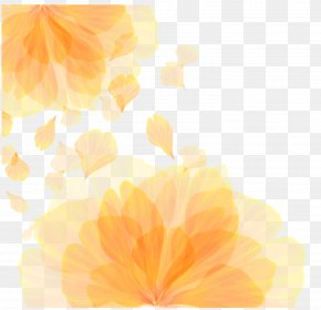 Vector Orange Flower Pattern Texture - Computer Wallpaper PNG