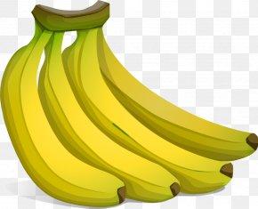Vector Banana - Banana Free Content Clip Art PNG