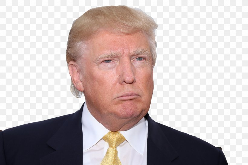 Professional Business Executive Entrepreneurship Chin, PNG, 1500x1000px, Donald Trump, Business, Business Executive, Businessperson, Celebrity Download Free