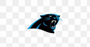 Schedule - Carolina Panthers National Football League Playoffs NFL Atlanta Falcons Miami Dolphins PNG