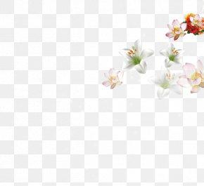Floating Flower - Textile Petal White Pattern PNG