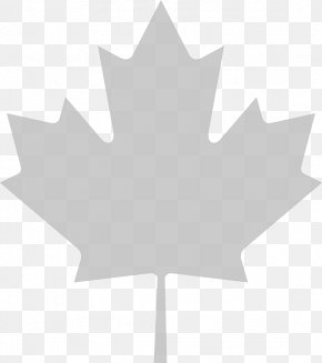 Maple Leaf Background - Flag Of Canada Maple Leaf Clip Art PNG