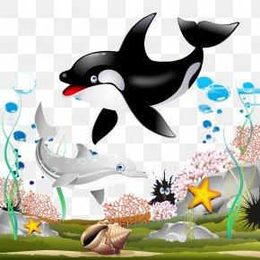Dolphin Couple - Killer Whale Cartoon Clip Art PNG