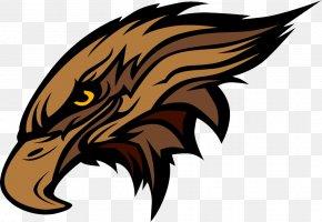 Eagle - Hawk Bald Eagle Clip Art PNG