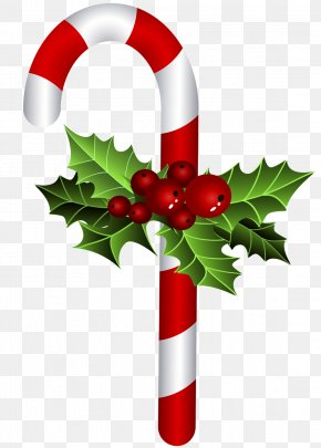 Christmas - Christmas Ornament Candy Cane Bastone Christmas Tree PNG