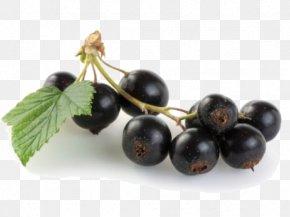 Jamun Java Plum File - Java Plum Fruit PNG